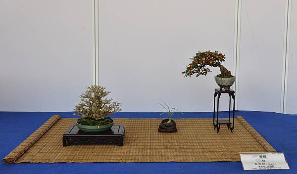 2017雅風展_00071.jpg