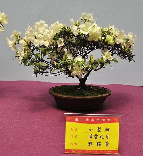 2018台中皋月展_00031.jpg