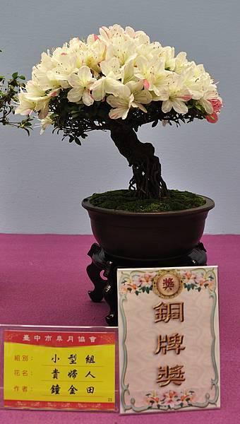 2018台中皋月展_00066.jpg