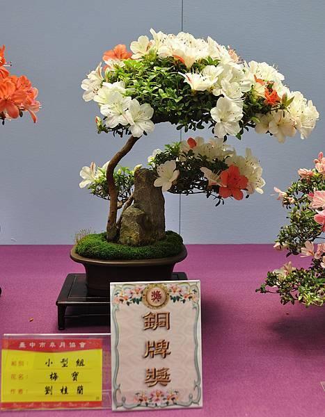 2018台中皋月展_00069.jpg