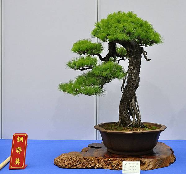 2018華松展_00027.jpg