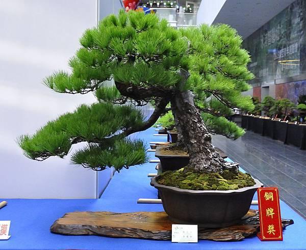 2018華松展_00036.jpg
