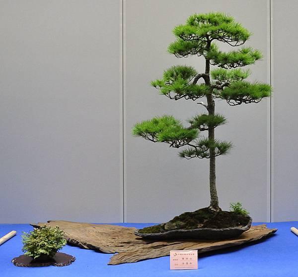 2018華松展_00047.jpg