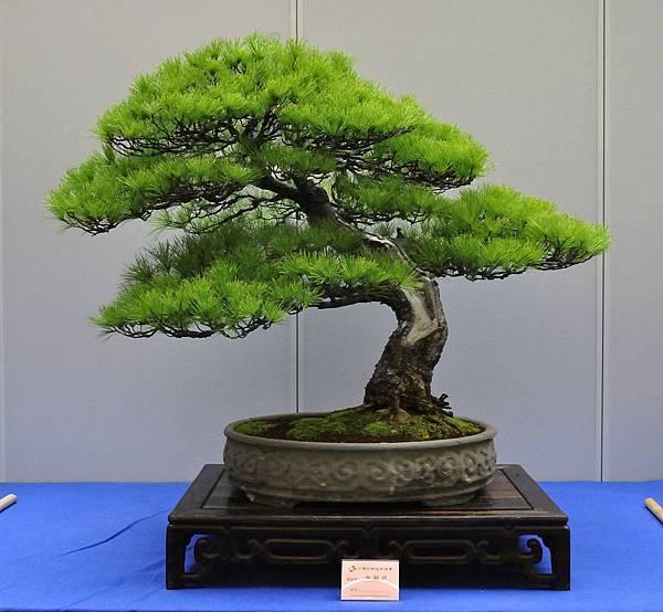 2018華松展_00050.jpg