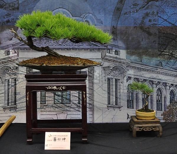 2018華松展_00102.jpg