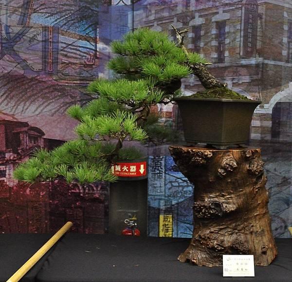 2018華松展_00105.jpg