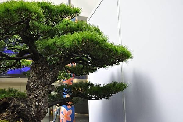 2018華松展_00125.jpg