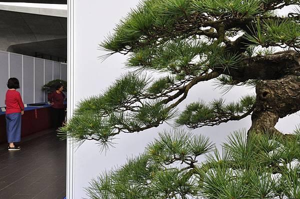 2018明潭松韻樹石大展_00049.jpg