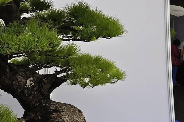 2018明潭松韻樹石大展_00071.jpg