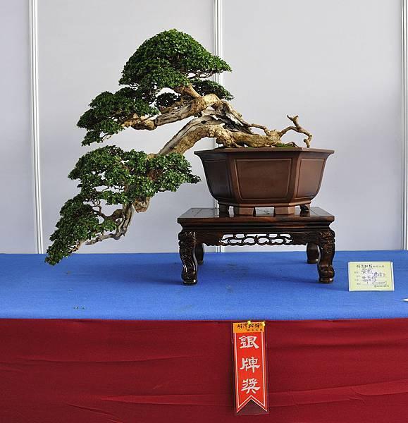 2018明潭松韻樹石大展_00083.jpg