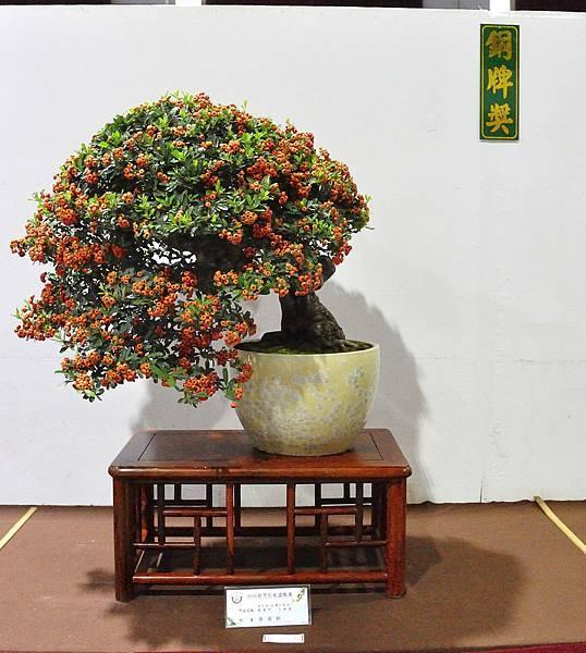 2018台灣花菓盆栽展_00042.jpg