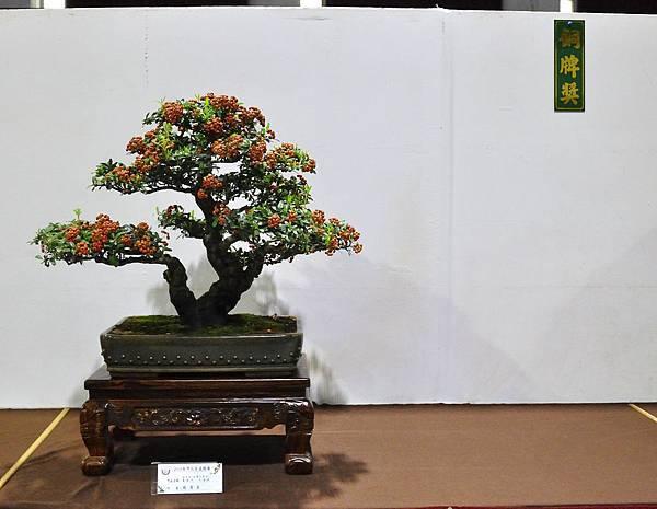 2018台灣花菓盆栽展_00045.jpg