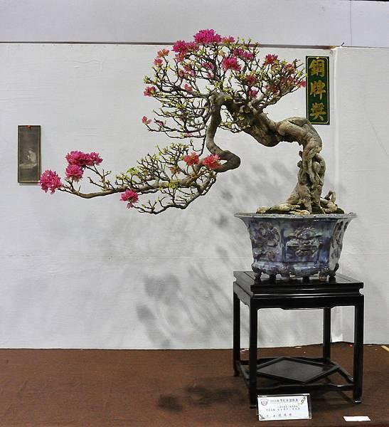 2018台灣花菓盆栽展_00059.jpg