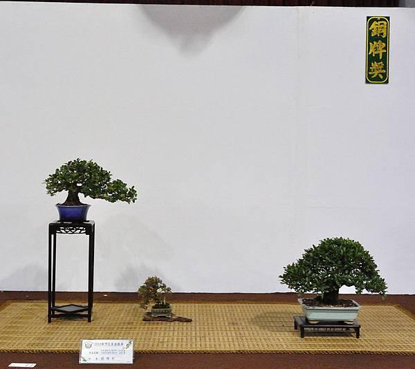 2018台灣花菓盆栽展_00066.jpg