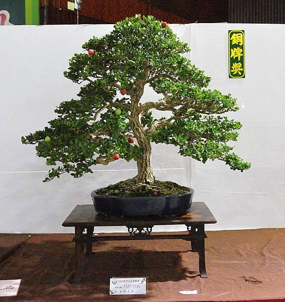 2018台灣花菓盆栽展_00071.jpg