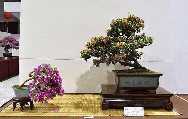 2018台灣花菓盆栽展_00106.jpg