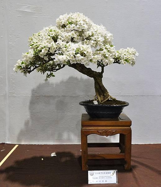 2018台灣花菓盆栽展_00121.jpg