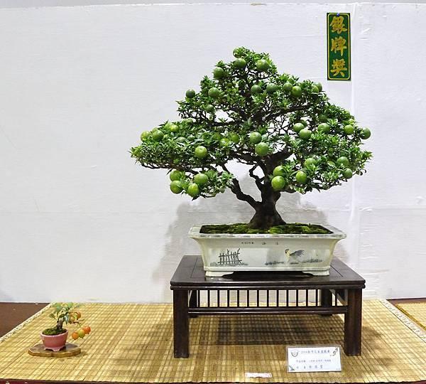 2018台灣花菓盆栽展_00018.jpg