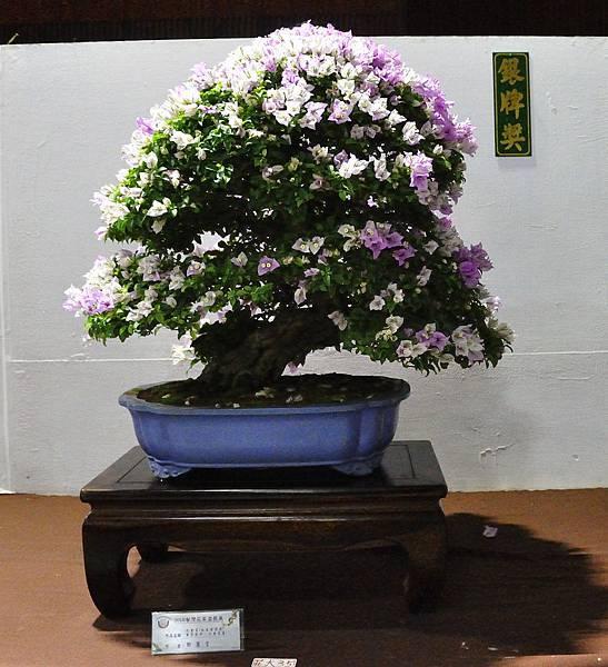 2018台灣花菓盆栽展_00030.jpg