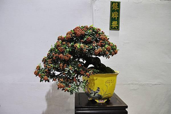 2018台灣花菓盆栽展_00029.jpg