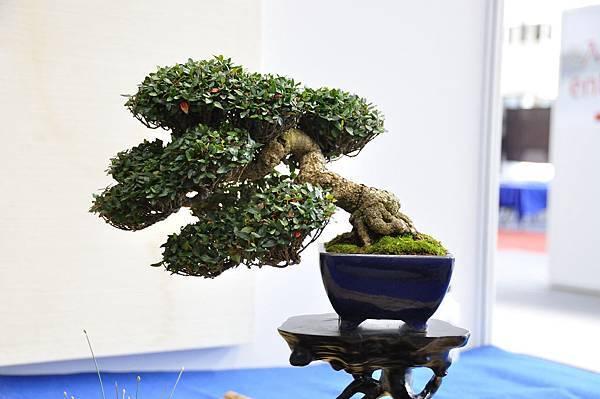 2018華風展_00366.jpg