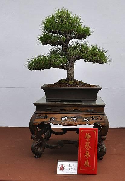 2018台中盆栽展_00160.jpg