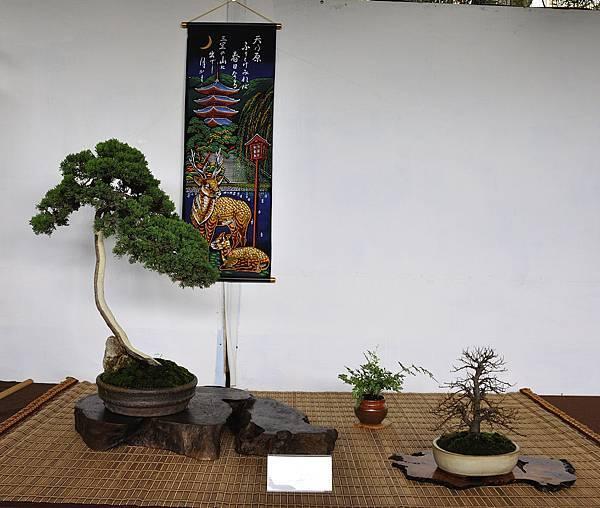 2018台中盆栽展_00168.jpg