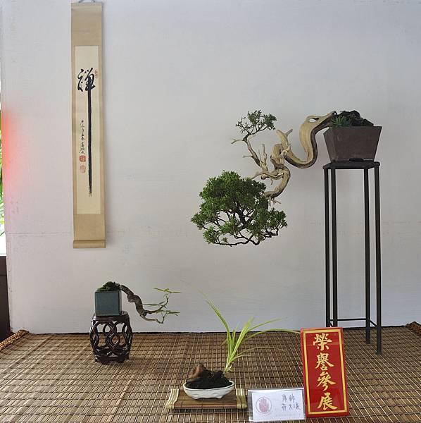 2018台中盆栽展_00176.jpg