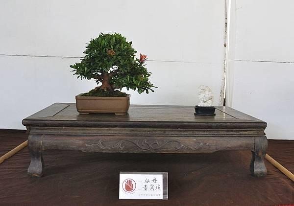 2018台中盆栽展_00179.jpg