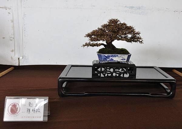 2018台中盆栽展_00182.jpg