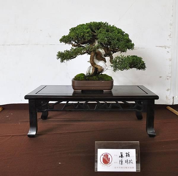 2018台中盆栽展_00183.jpg