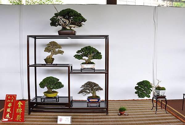 2018台中盆栽展_00005.jpg