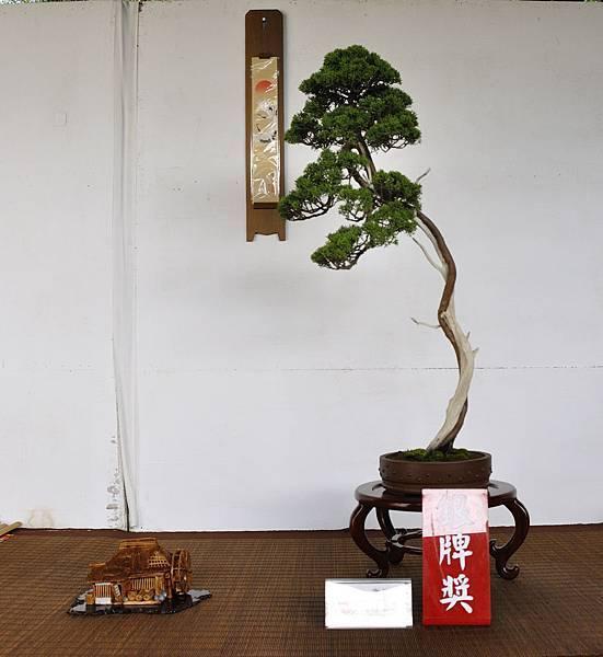 2018台中盆栽展_00019.jpg