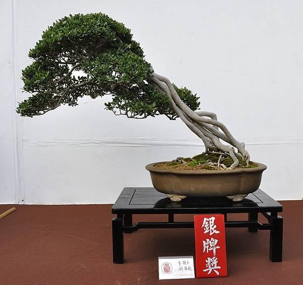 2018台中盆栽展_00032.jpg