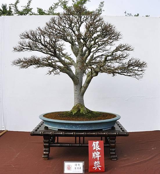 2018台中盆栽展_00033.jpg