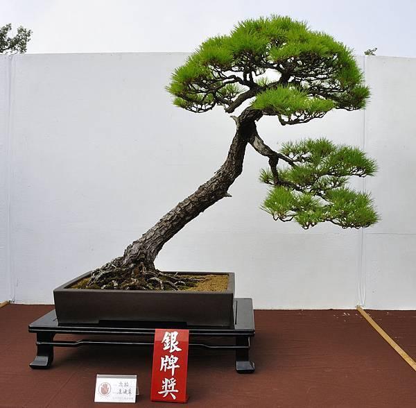 2018台中盆栽展_00035.jpg