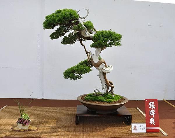 2018台中盆栽展_00037.jpg