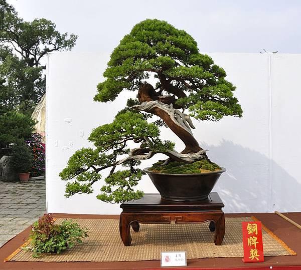 2018台中盆栽展_00041.jpg