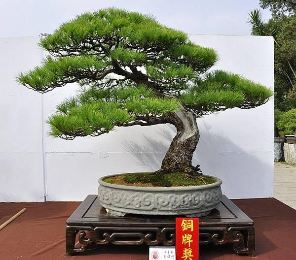 2018台中盆栽展_00043.jpg