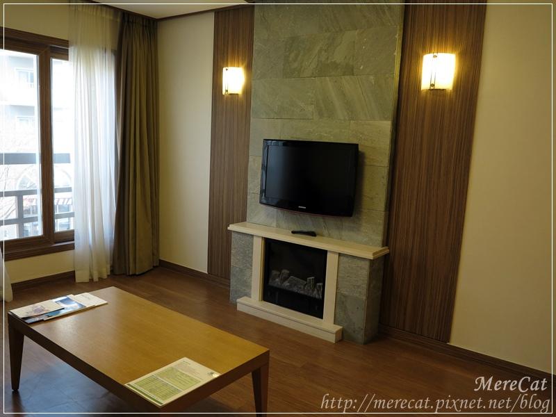 Room (7).JPG