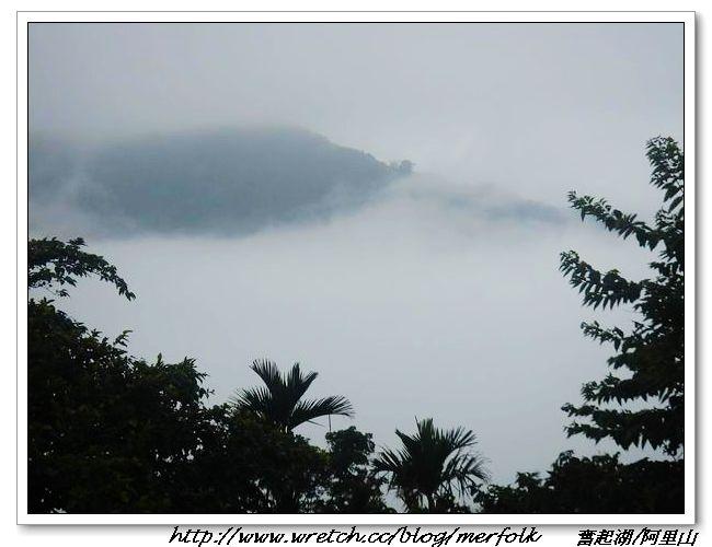 春節之旅Day1_奮起湖&阿里山 03.jpg