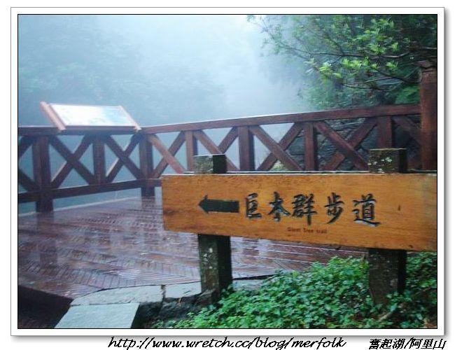 春節之旅Day1_奮起湖&阿里山 19.jpg