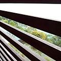 從陽台欄杆望日月潭