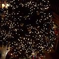 聖誕之森03