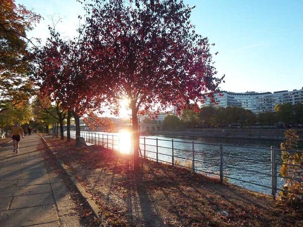 Allee des Cygnes under sunset 01