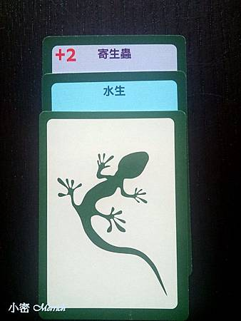 小密_演化論_10