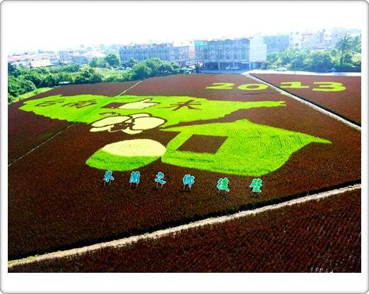 2013臺南好米嘉年華會:台南後壁區彩繪稻田~「2013台南好米嘉年華會」
