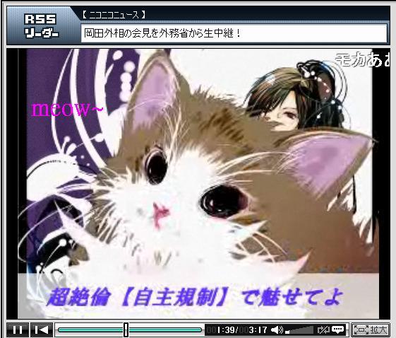 萌卡meow~.JPG