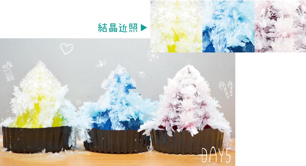 聖誕樹-03.png