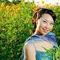 [ 美的世界 ] -黃野菊系列